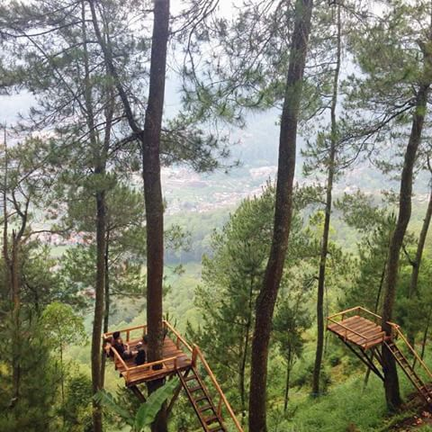Omah Kayu Paralayang Wisata Hits Kota Batu