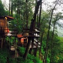 Sensasi Menginap Unik Rumah Kayu Asiknya Paralayang Gunung Liburan Hotel