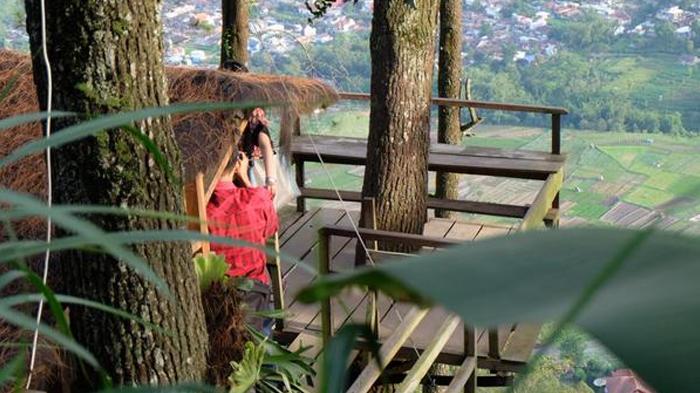 Tahu Rasanya Menginap Hotel Atas Pohon Omah Kayu Batu Malang