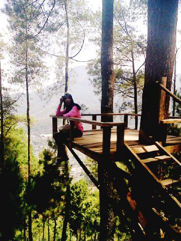 Travelling Omah Kayu Wisata Rumah Pohon Berada Gunung Tepatnya Lokasi