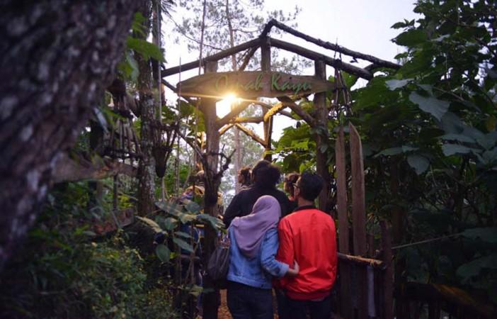 Unik Wisata Alam Sediakan Hotel Kayu Atas Pohon Oleh Mas