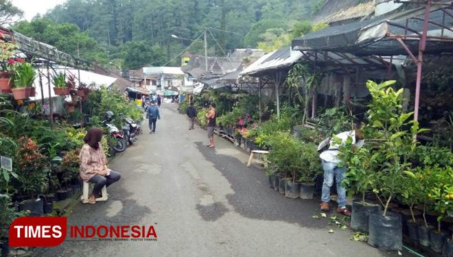 Jalan Pasar Bunga Songgoriti Spot Wisata Kota Batu Foto Ferry