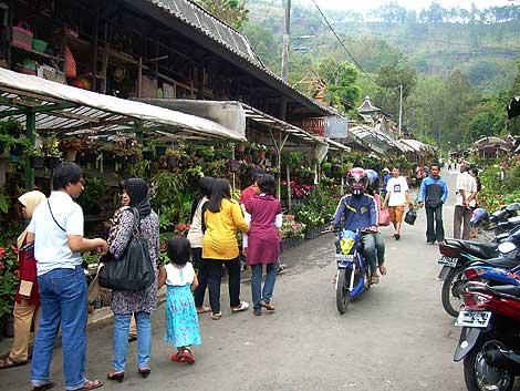 Pasar Wisata Songgoriti Jelajah Malang Raya Reservasi Villa Keluarga Rombongan
