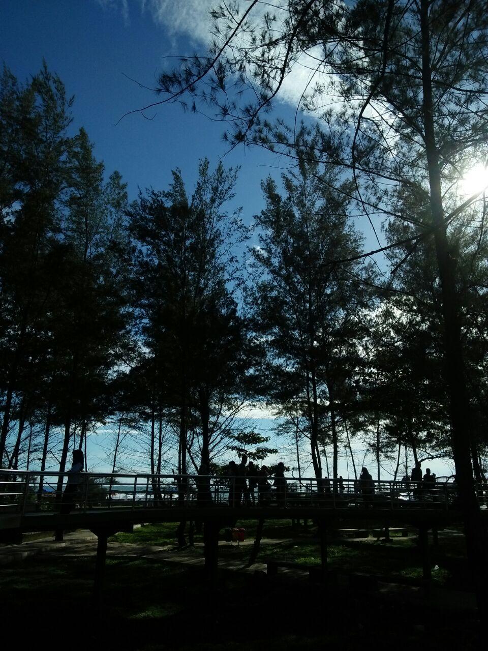 Loisa Story Taman Pantai Berkas Bengkulu Hal Tersebut Tidak Baik