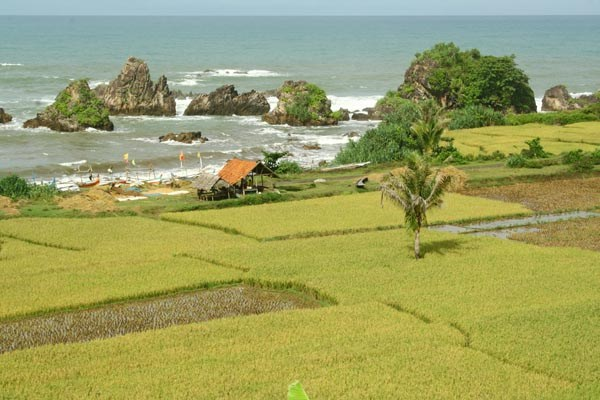 20 Wisata Pantai Eksotis Banten Wajib Kunjungi Cihara Mabak Kota