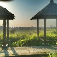 Desa Budaya Kertalangu Denpasar Bali Foto Diambil Oleh Yogi 10