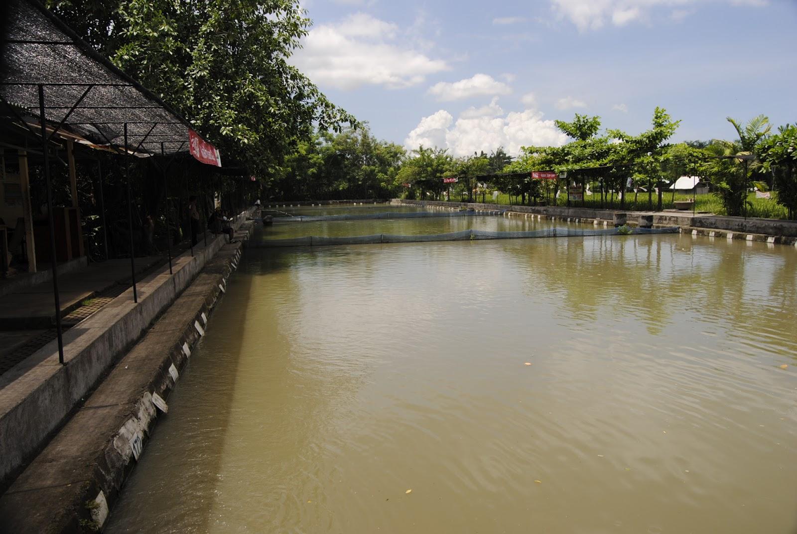 Kolam Pancing Desa Kesiman Kertalangu Budaya Kota Denpasar