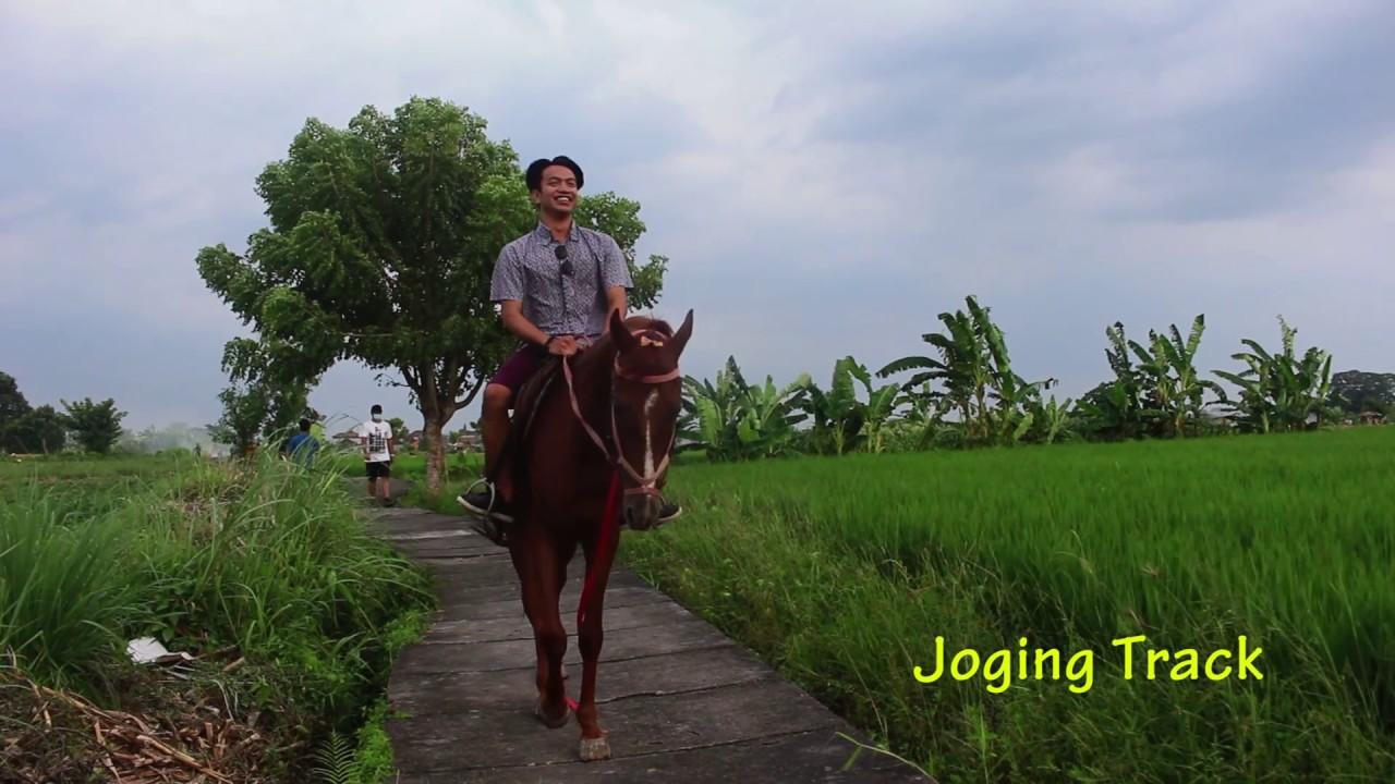Objek Wisata Desa Budaya Kertalangu Denpasar Bali Youtube Kota