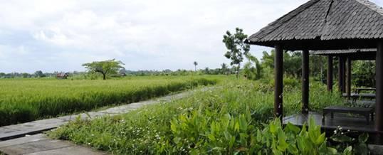 Outbound Bali Kertalangu Cultural Village Denpasar Desa Budaya Kota