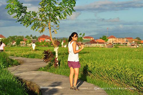 Www Windykei Blogspot Desa Budaya Kertalangu Kota Denpasar