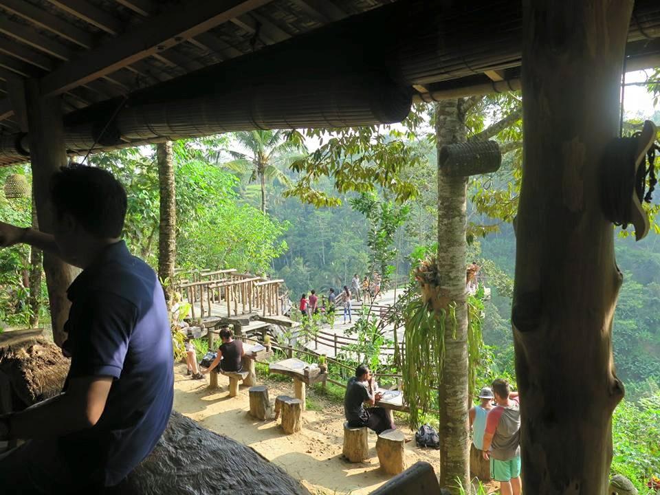 Agrowisata Bali Pulina Minum Kopi Alam Penuh Pesona Dasar 5