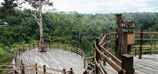 Bali Pulina Agro Tourism Heart Ubud Bale Udang Mang Kebun