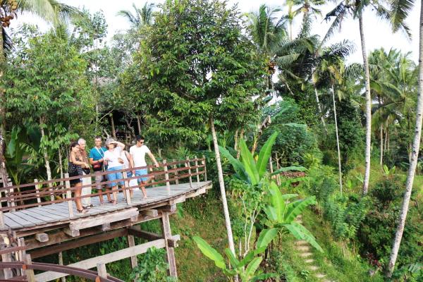 Bali Pulina Minum Kopi Penuh Pesona Balebengong Bedanya Tidak Hidangan