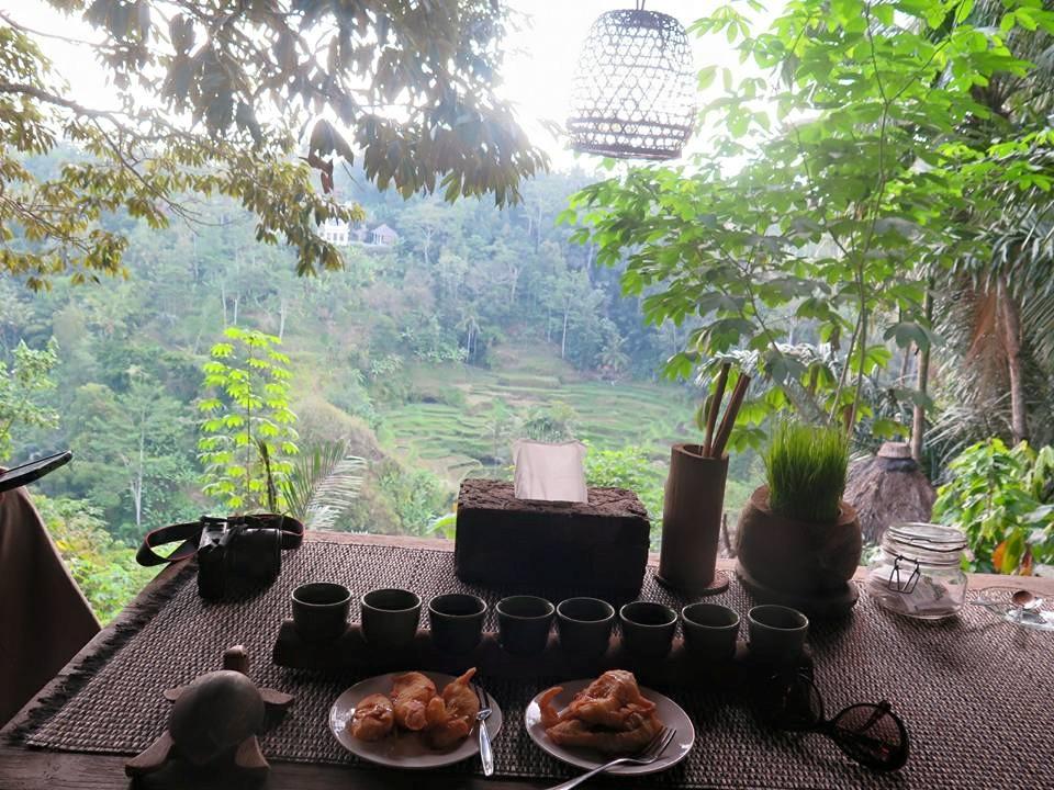 Bali Pulina Minum Kopi Penuh Pesona Balebengong Kebun Luwak Kota