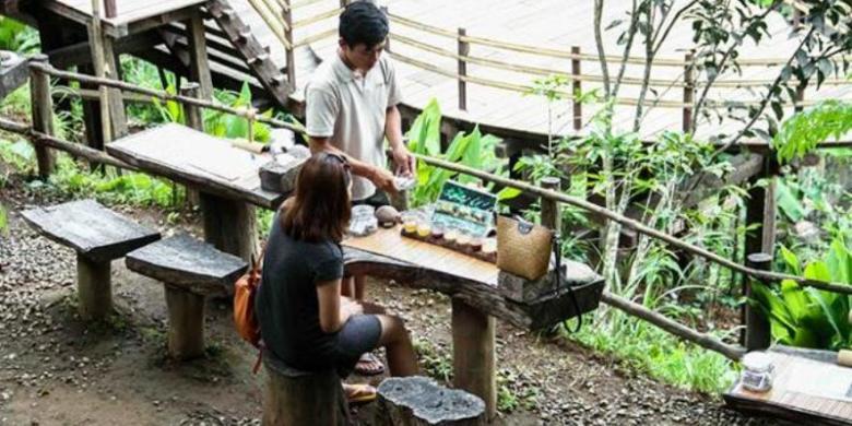 Bali Pulina Tempat Menikmati Kopi Luwak Bal Pariwisata Berbagai Tanaman
