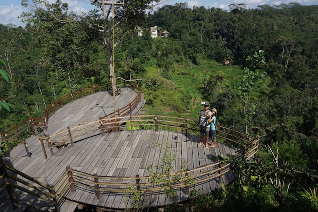 Ekowisata Menyelamatkan Pariwisata Pulau Dewata Kebun Kopi Luwak Bali Kota