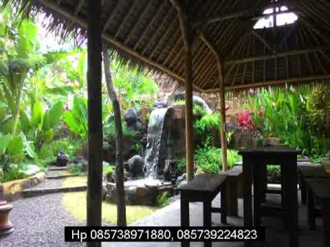 Jual Kopi Luwak Asli Bali Murah Bukit Sari Denpasar Youtube