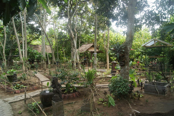 Mengunjungi Wisata Agro Negari Bali Kebun Kopi Luwak Kota Denpasar