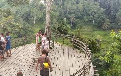 Objek Wisata Bali Pulina Agrowisata Kabupaten Gianyar Mentari Anjungan Agro