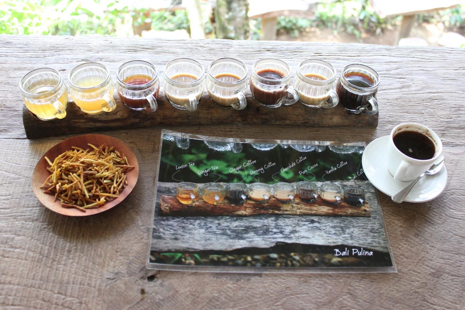Paket Bali Pulina Nikmati Liburan Agro Wisata Sambil Menikmati Kopi