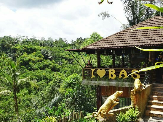Tak Berkategori Sewa Mobil Dibali Kopi Luwak Bali Wisata Bermunculan