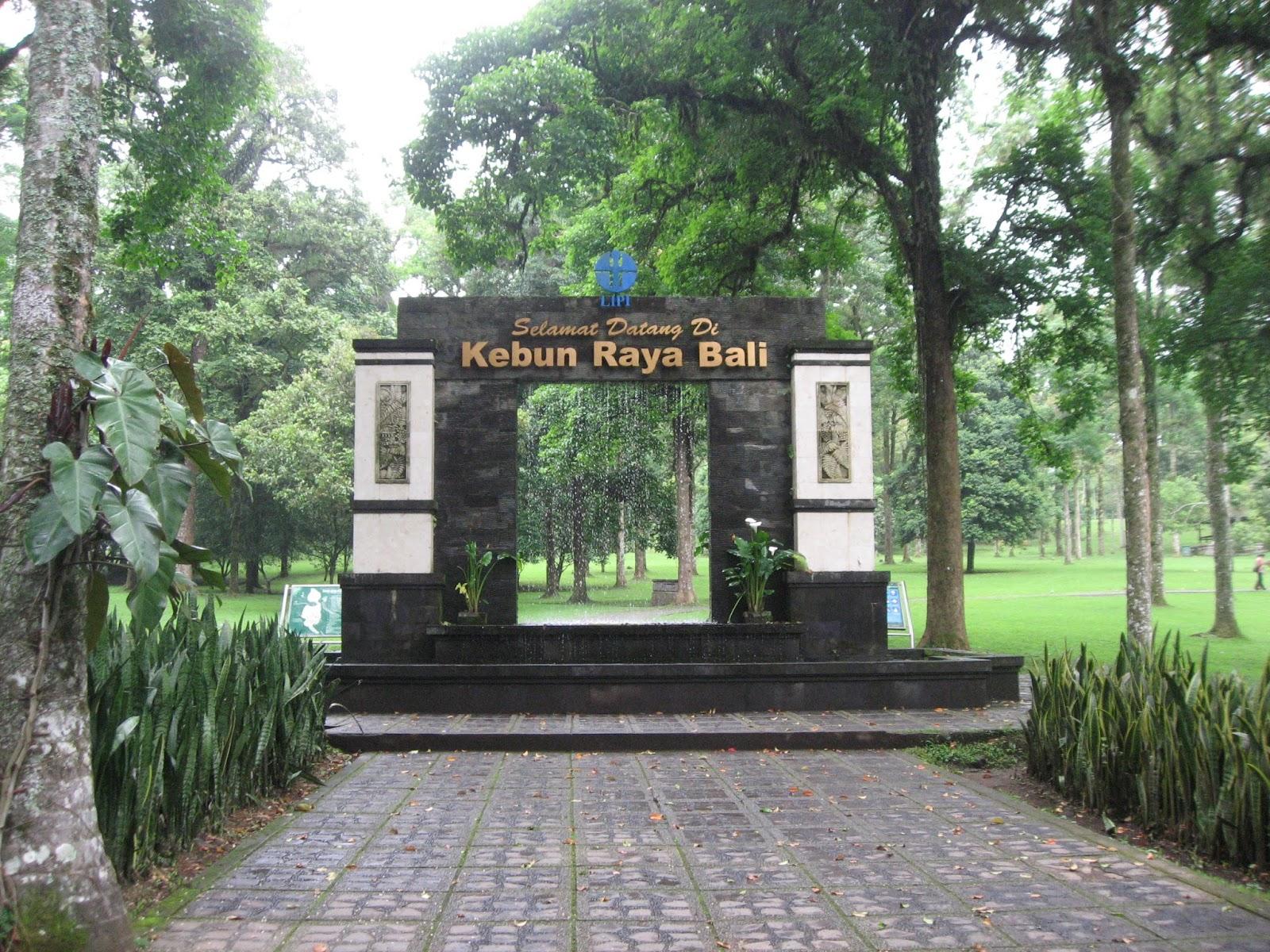 Wisata Hemat Bali Pagi Jam 8 00 Wita Sopir Menjemput