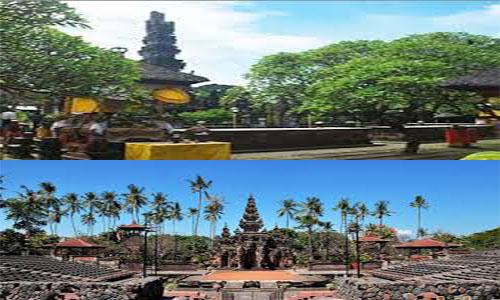 10 Tempat Wisata Denpasar Bali Patut Kamu Kunjungi Konservasi Penyu