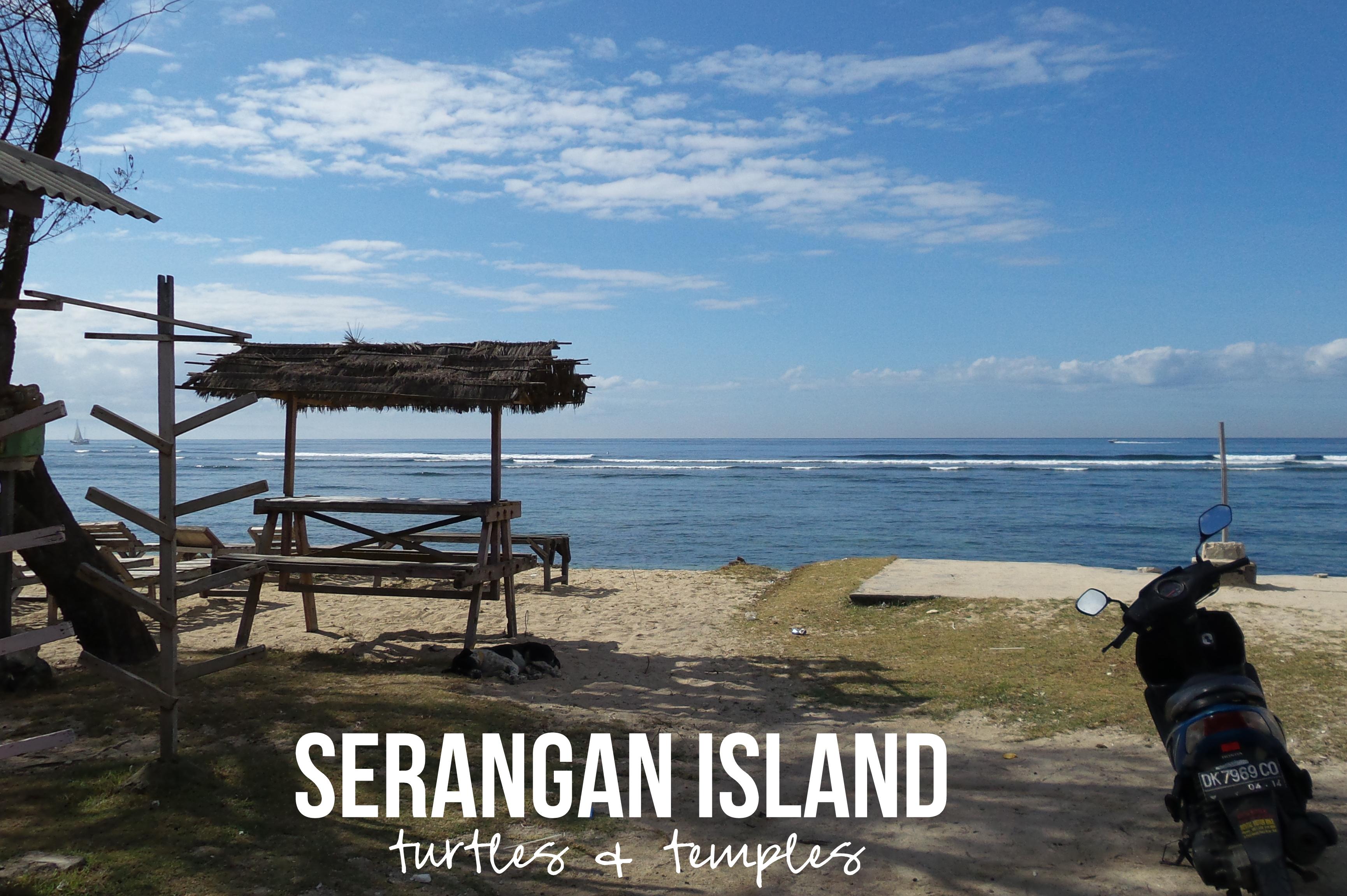 Pulau Serangan Bali Kura Guide Konservasi Penyu Kota Denpasar