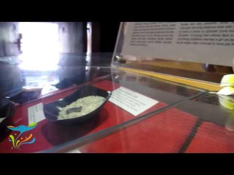 Bali Museum Kota Denpasar