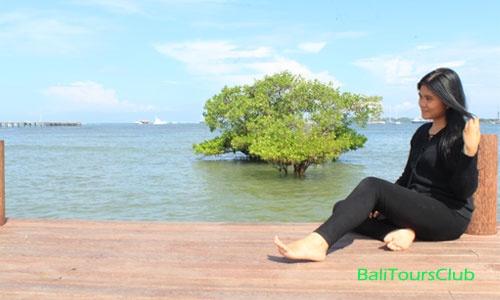 Dream Island Taman Inspirasi Pantai Mertasari Sanur Foto Selfie Kota
