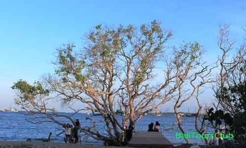Dream Island Taman Inspirasi Pantai Mertasari Sanur Pemandangan Kota Denpasar