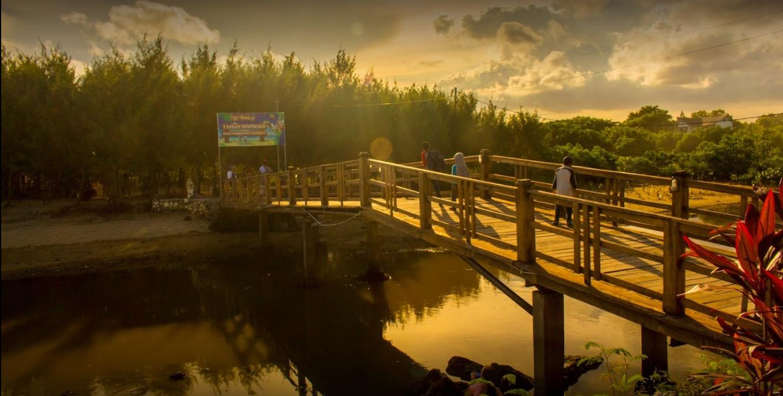 Dream Island Tempat Wisata Sanur Mertasari Bali Koala Sediakan Oleh