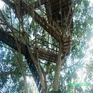 99 Objek Wisata Bali Unik Hits Murah Instagramable Rumah Pohon