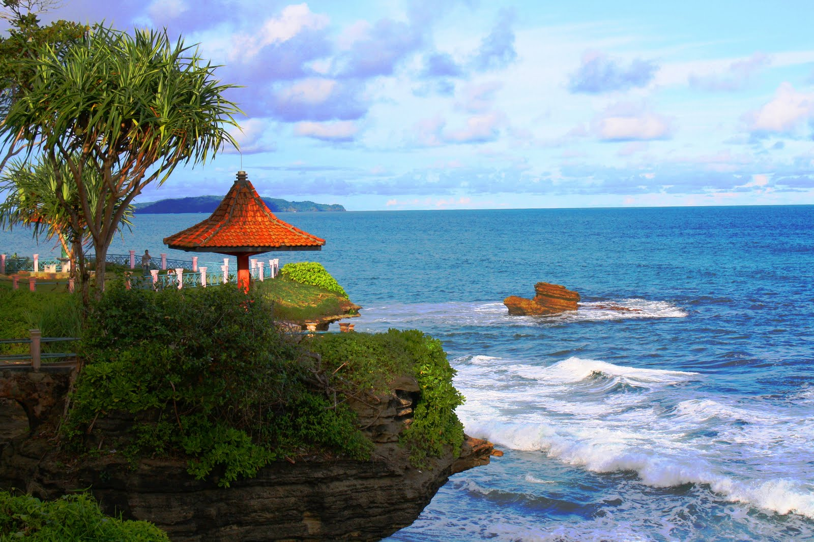 Latest Posts Informasi Wisata Indonesia Tips 5 Tempat Hiu Kota
