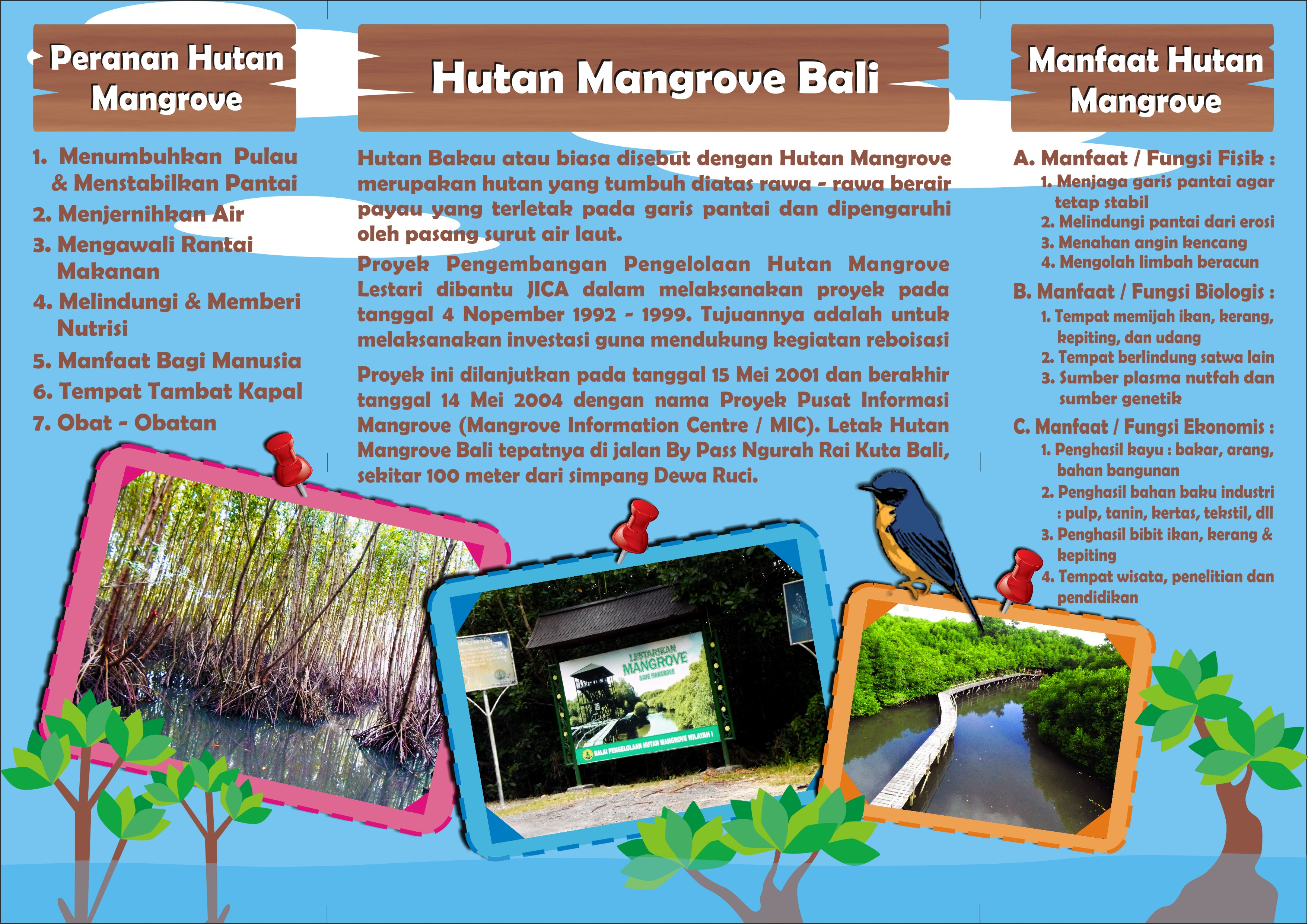 Brosur Hutan Mangrove Bali Desain Komunikasi Visual Depan Wisata Bakau