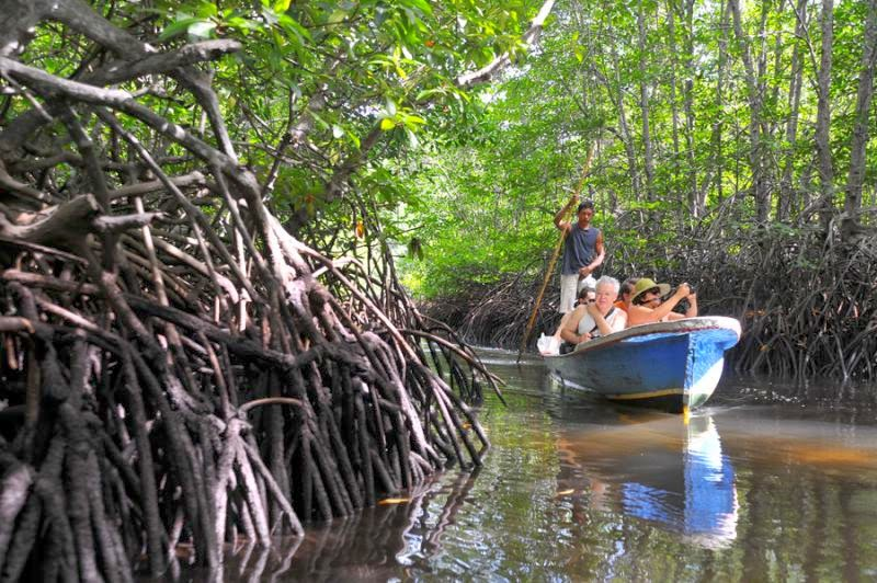 Celoteh Kiky Tempat Wisata Bali Terkenal Hutan Mangrove Doc Http