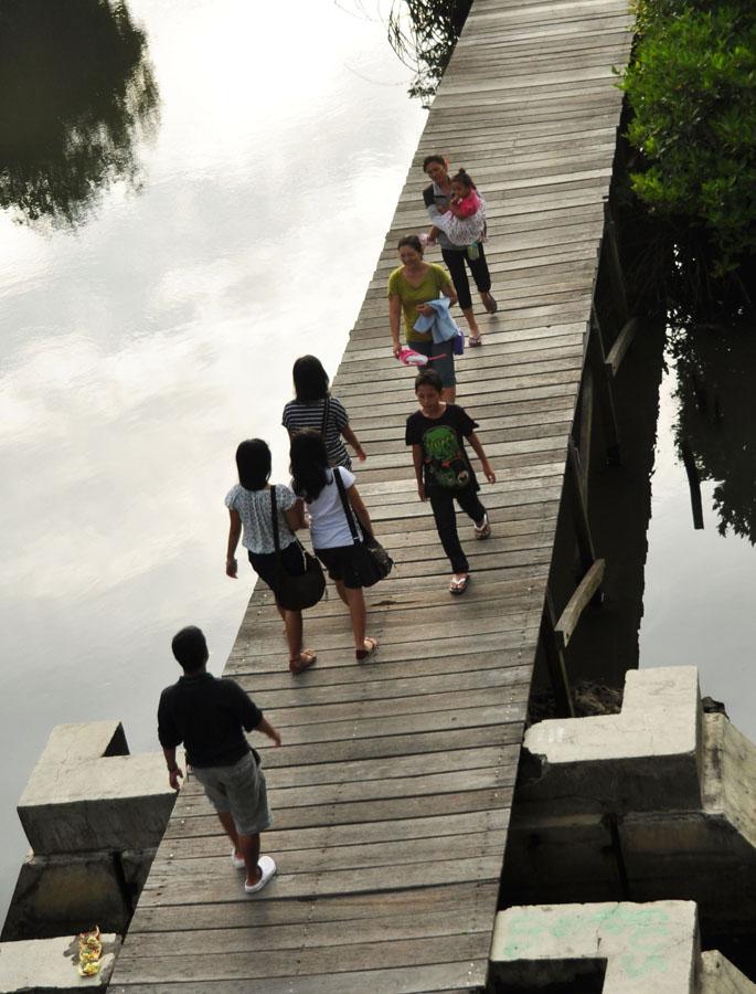 Hutan Mangrove Bakau Sahabat Jalan Ekowisata Terletak Jl Pass Ngurah