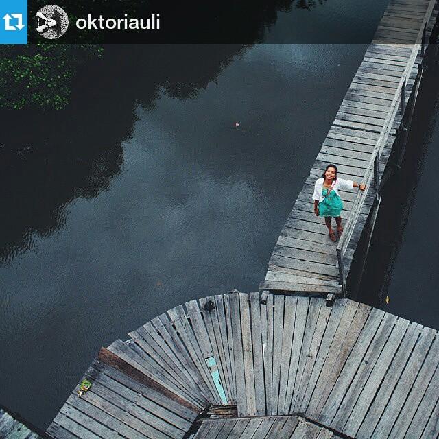 Hutan Mangrove Bali Instagram Obyek Wisata Bakau Kota Denpasar