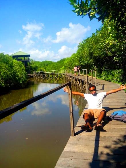 Keindahan Wisata Hutan Mangrove Bali Puteriputeri Mengingat Lokasinya Objek Alam