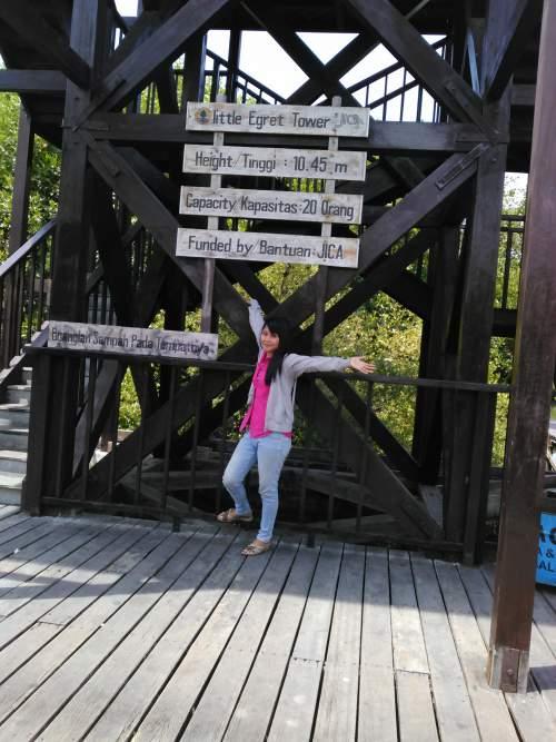 Objek Wisata Hutan Mangrove Kota Denpasar Bali Mentari Holiday Tempat