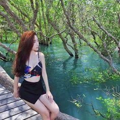 Ruang Pameran Balai Mangrove Bali Pinterest Hutan Menjadi Pelindung Abrasi