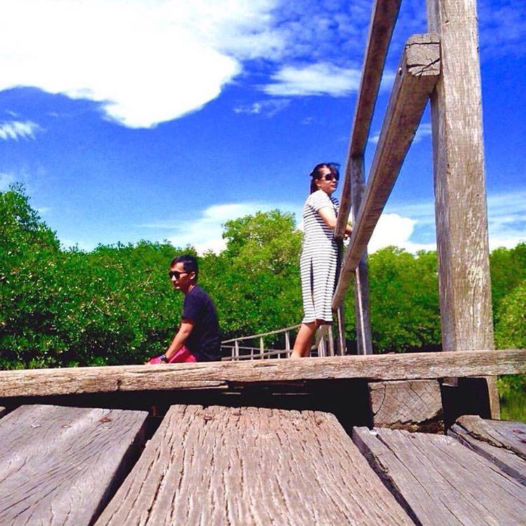 Wisata Alam Hutan Mangrove Taman Raya Ngurah Rai Bali 2