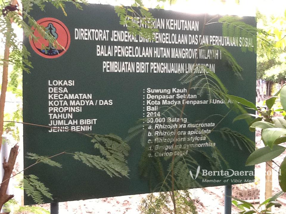 Wisata Alam Hutan Mengrove Kuta Bali Berita Daerah Mangrove 2