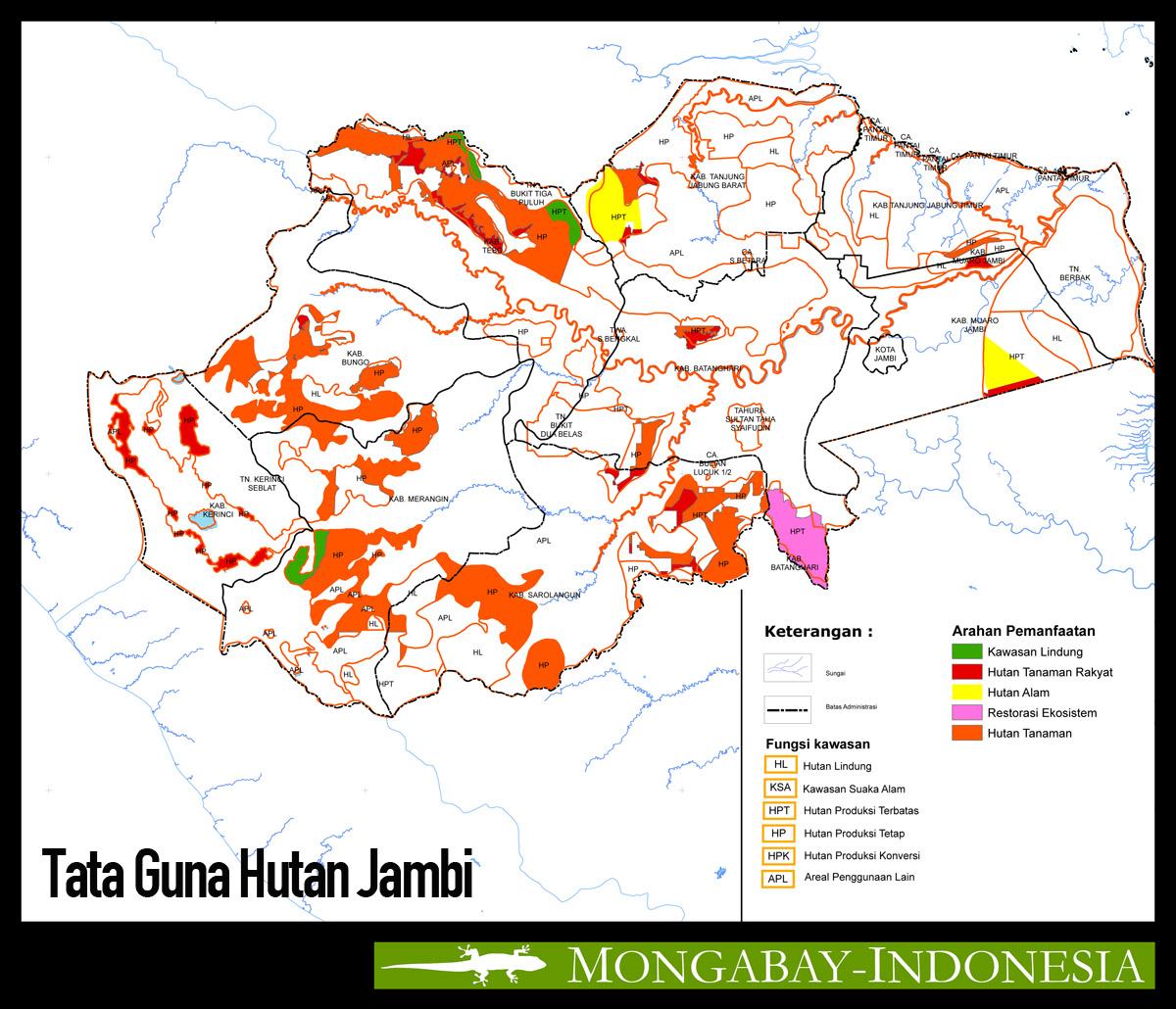 Fokus Liputan Kelapa Sawit Antara Kepentingan Politik Tata Peta Guna