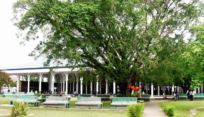 Padangsche Bovenlanden Ranah Rantau Masjid Agung Al Falah Jambi Terletak