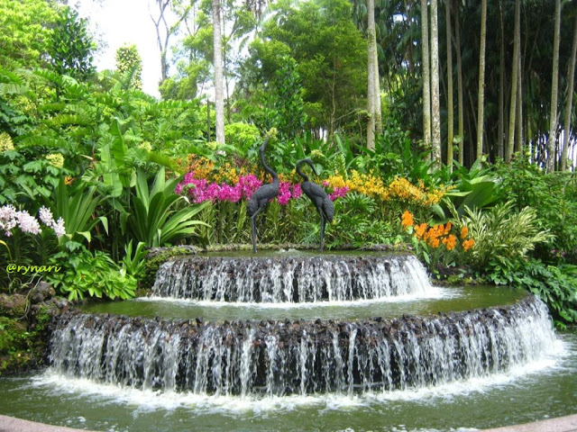 10 Tempat Wisata Jambi Populer Cerita Dunia Taman Anggrek Sri