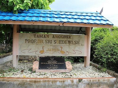 Mengunjungi Taman Anggrek Sri Soedewi Perbincangan Perempuan Kota Jambi