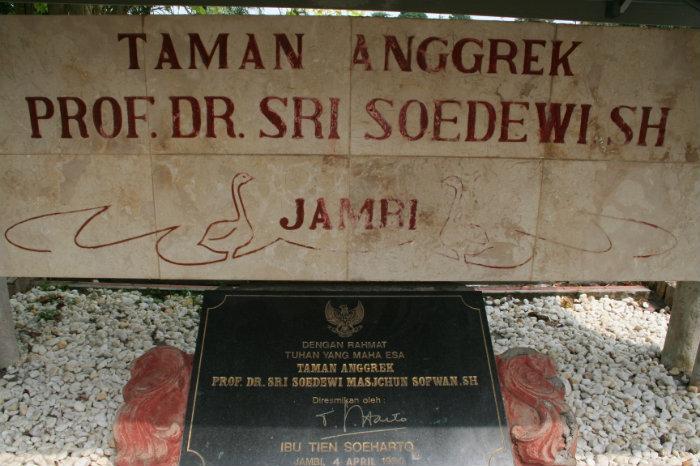 Objek Wisata Jambi Taman Anggrek Sri Soedewi Seputar News Lokasi