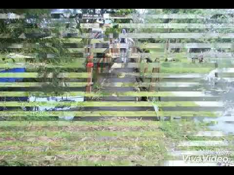Taman Anggrek Agent Change Peduli Kota Jambi Youtube Sri Sudewi