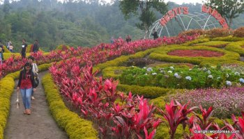 Tempat Wisata Jambi Rental Mobil Sewa Taman Anggrek Sri Soedewi